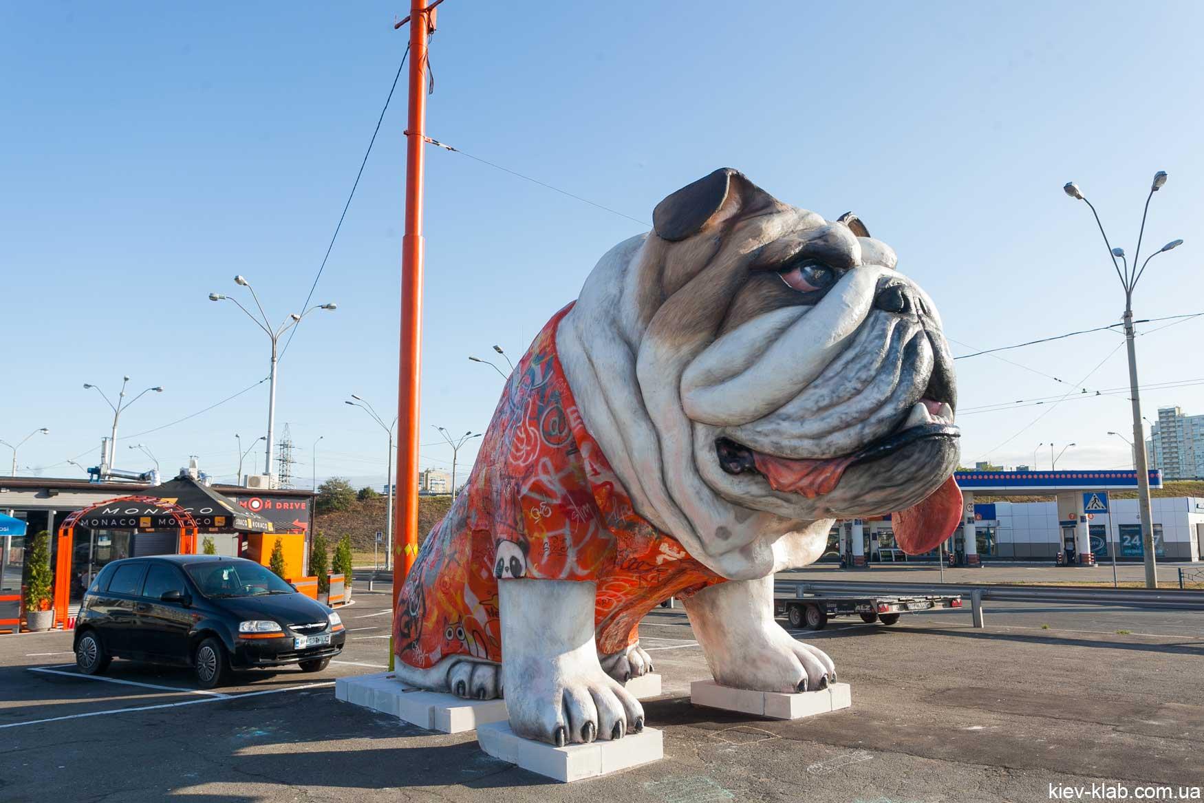 """Скульптура """"Друг"""". Огромный пёс в центре Киева."""