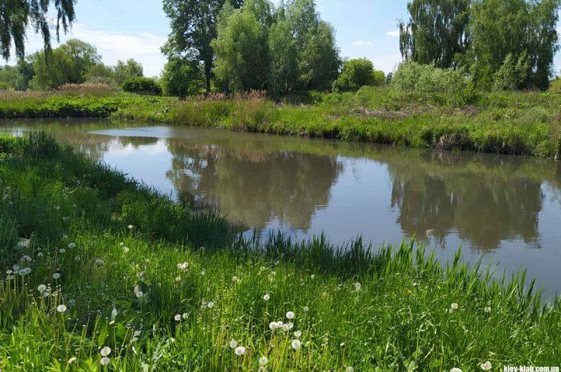 Речка возле Жулян