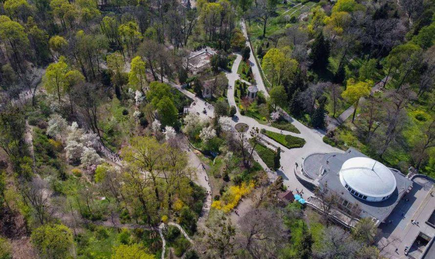 Ботанический сад Фомина