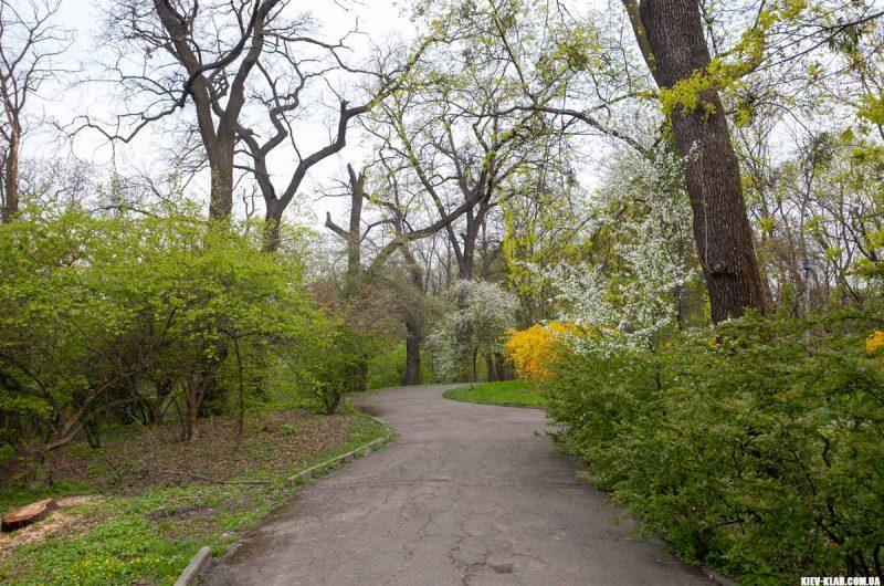 Прогулка в ботаническом саду