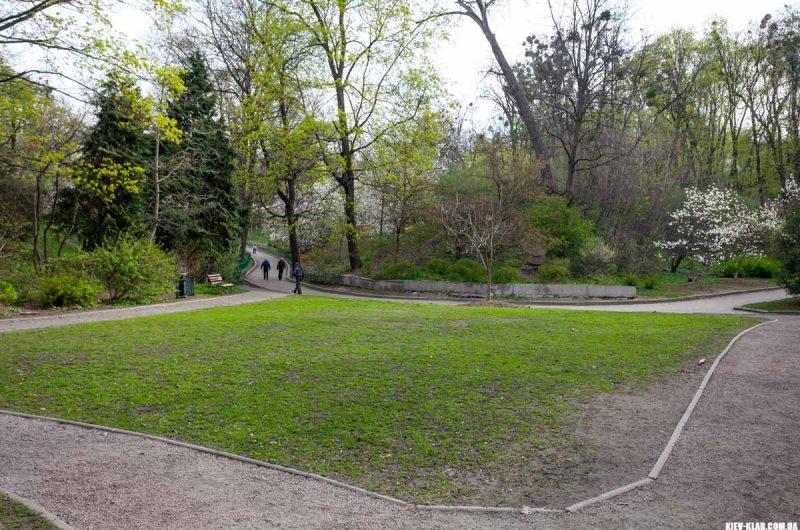 Поляна в ботаническом саду