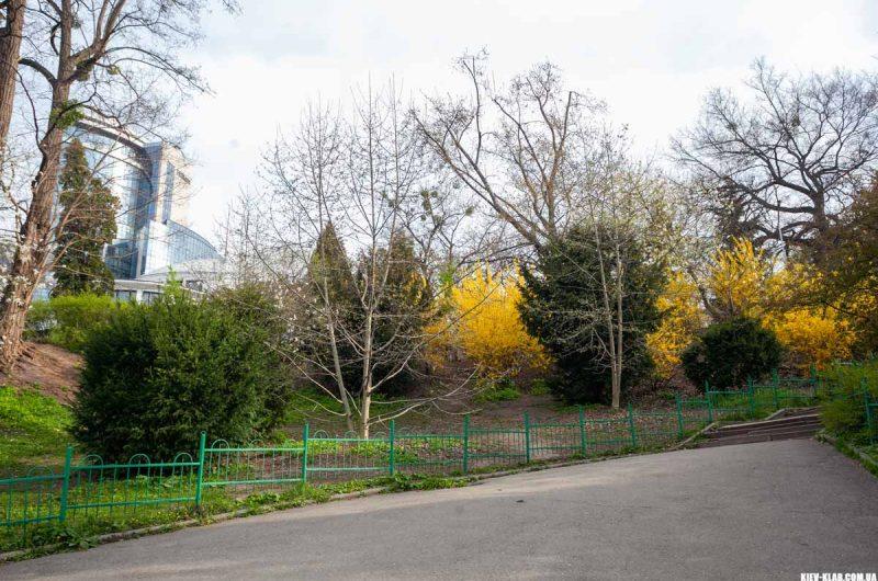 Весна в ботаническом саду Фомина